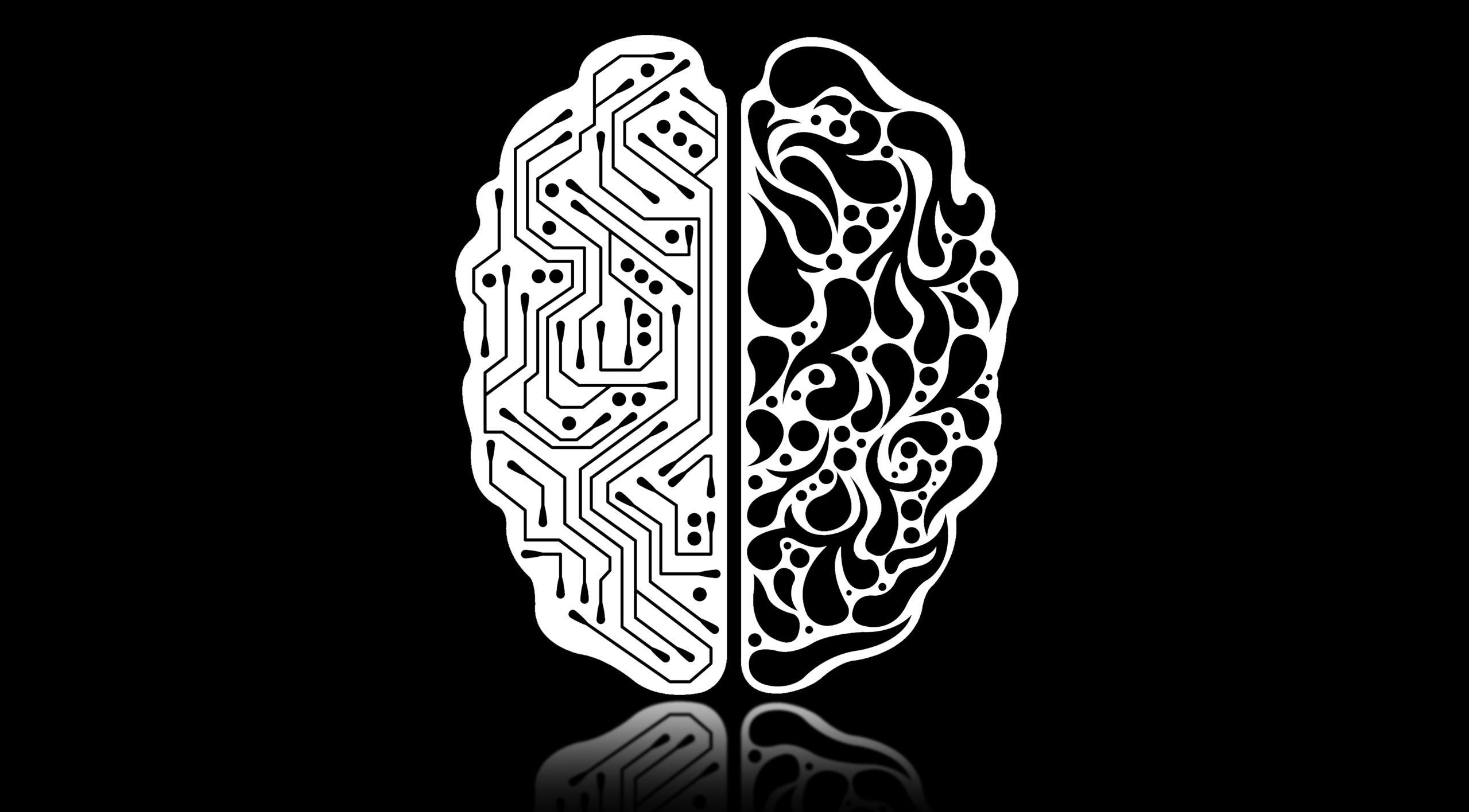 Dichotomy of AI