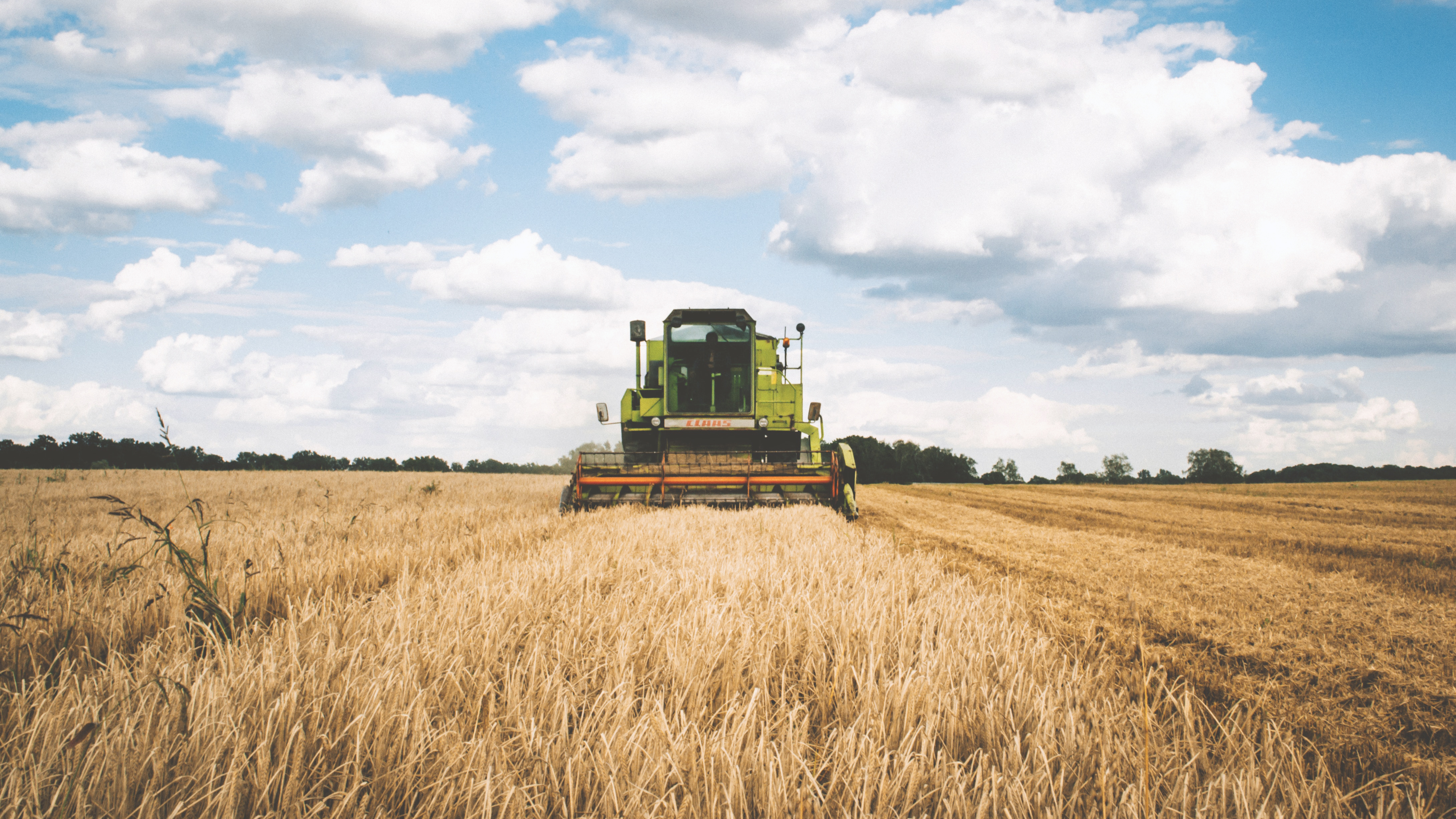Image of a harvester collecting grains