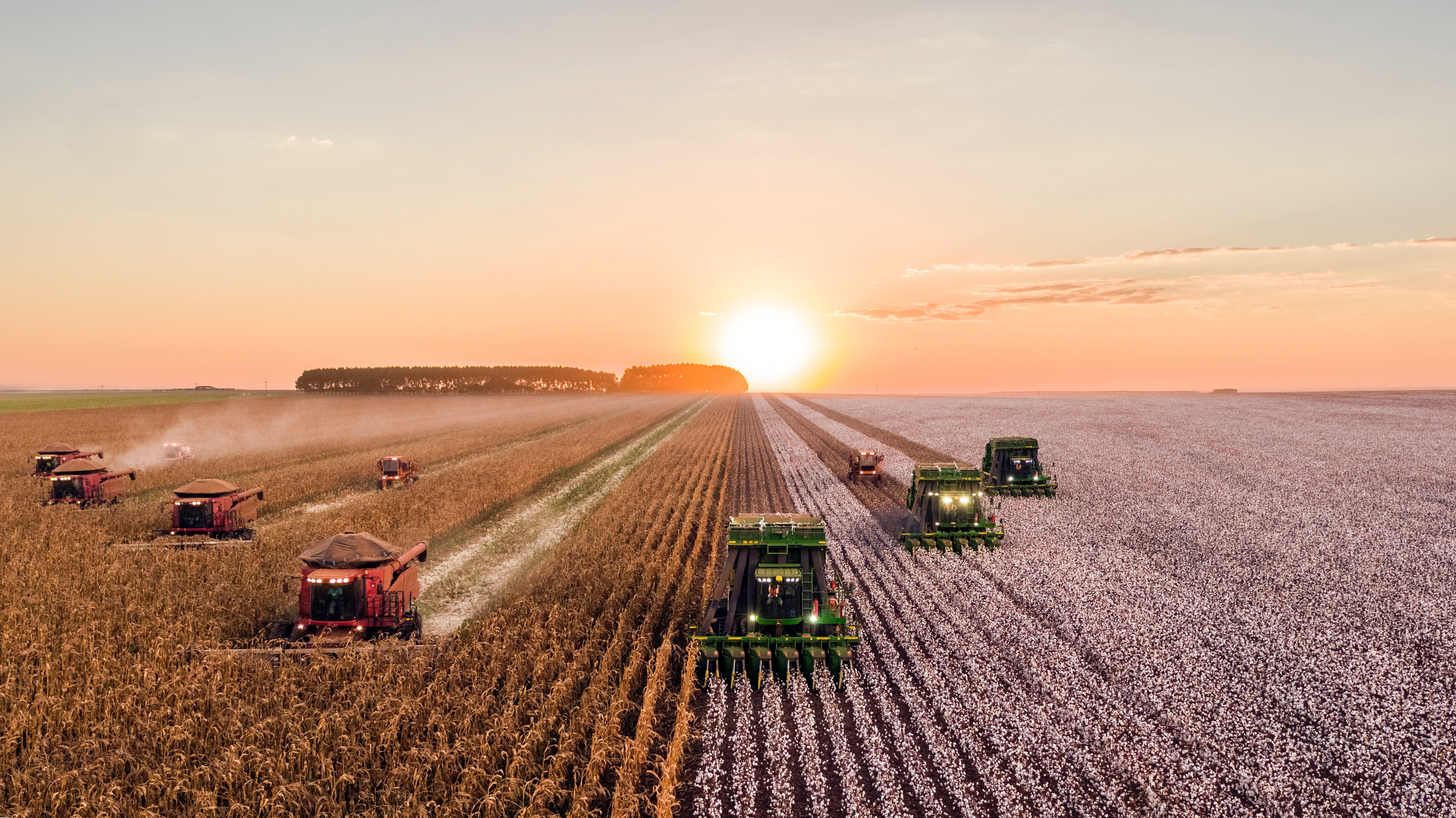Image of harvesters in a field with the sun setting behind them