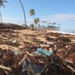 Producing plastics sustainably: perspectives